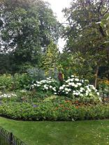 Flower gardens in Kensington Gardens